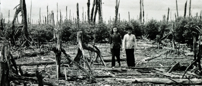 vietname-defoliated