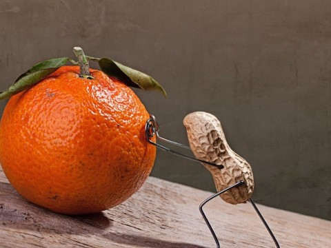 Sisyphus; peanut brain and bitter fruit?